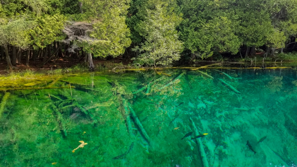 Crystal Blue waters of Kitch-iti-Kipi in the Upper Peninsula